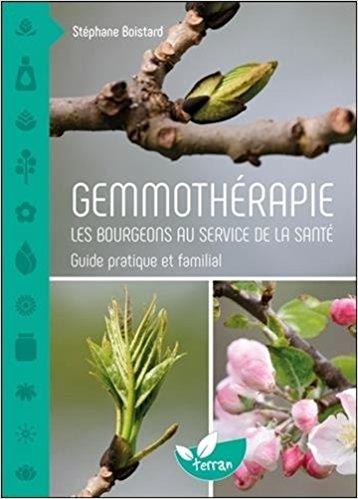 Gemmothérapie : les bourgeons au service de la santé